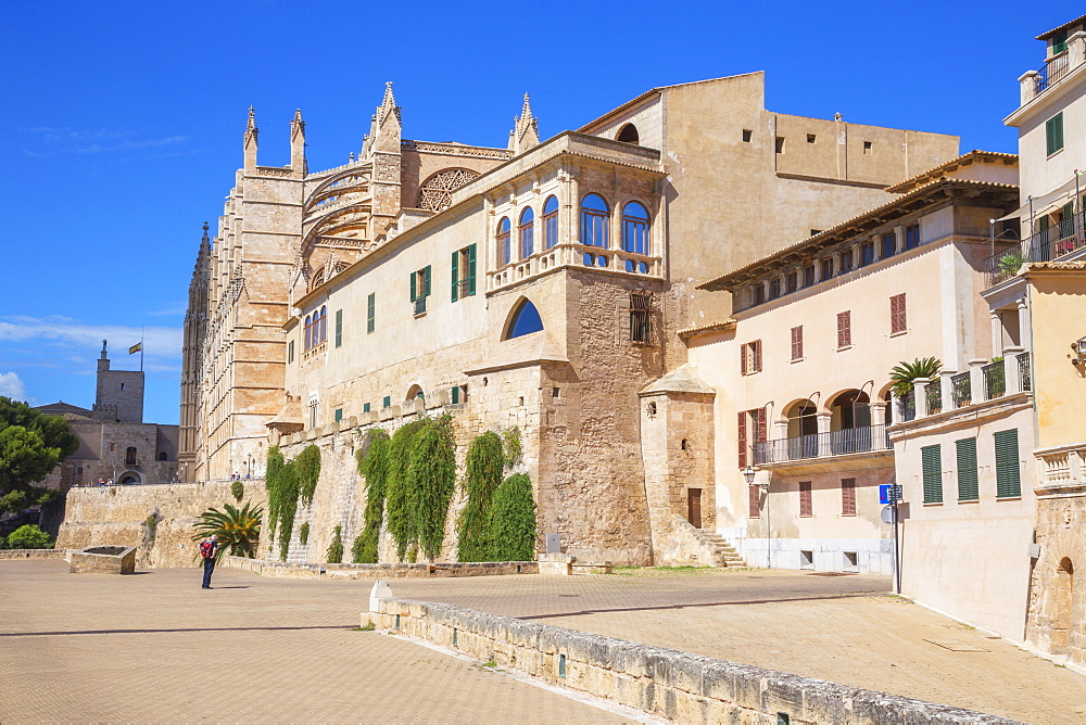 La Seu Cathedral, Palma de Mallorca, Mallorca (Majorca), Balearic Islands, Spain, Europe - 718-2282