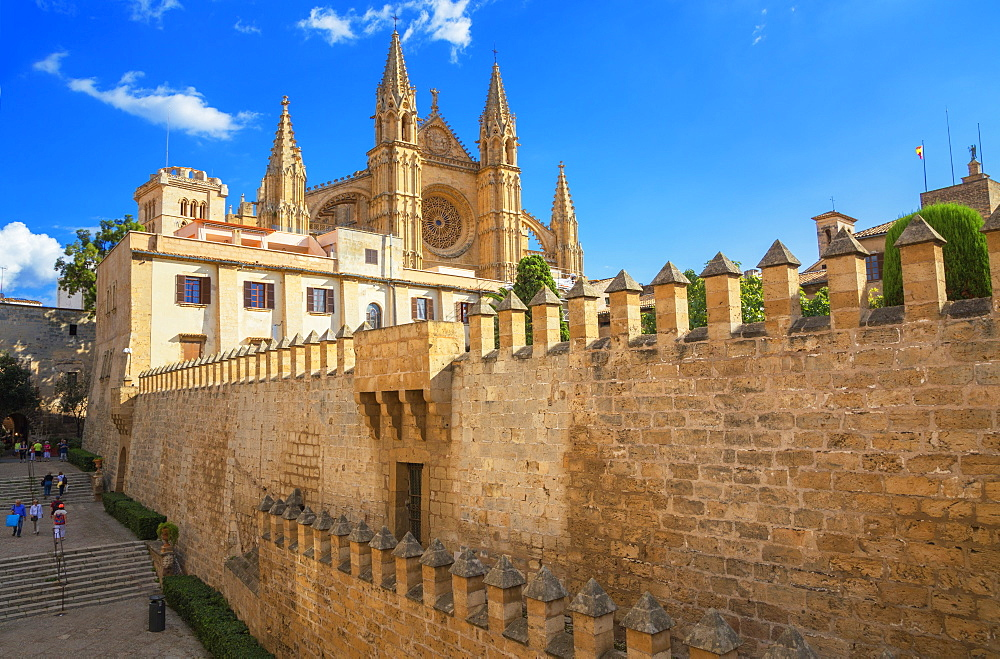 La Seu Cathedral, Palma de Mallorca, Mallorca (Majorca), Balearic Islands, Spain, Europe - 718-2284