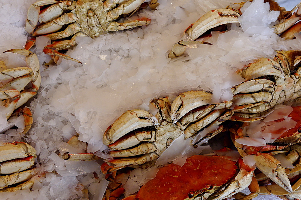 Crabs for sale in Pike Market, Public Market Center, Seattle, Washington State, United States of America, North America