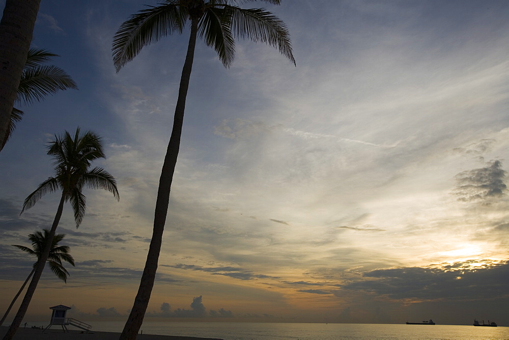Sunrise, Fort Lauderdale, Florida, United States of America, North America