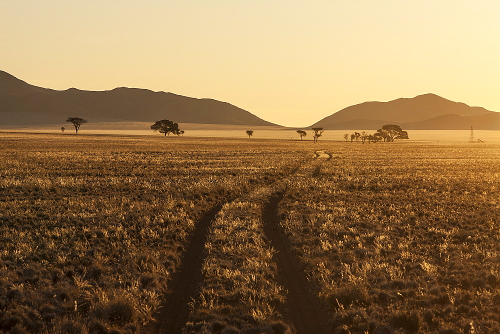 Track at sunset in the Namib Desert, Namibia, Africa