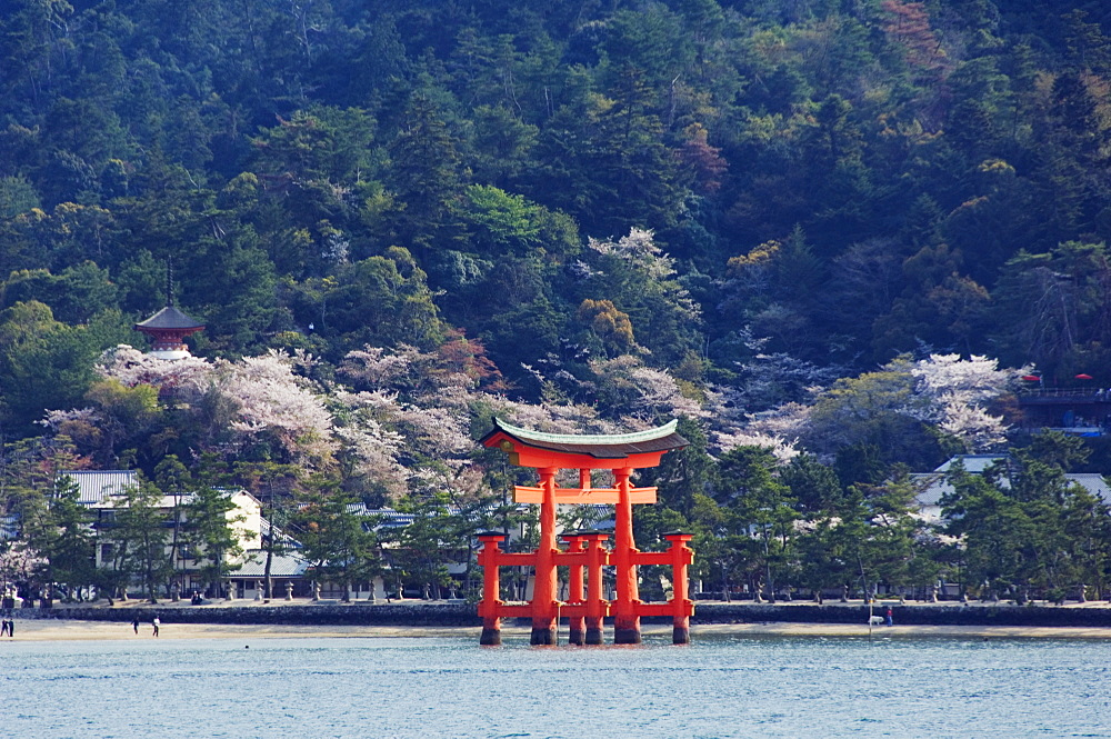 Floating torii gate, Itsukushima Jinja shrine, Miyajima island, UNESCO World Heritage Site, Honshu Island, Japan, Asia