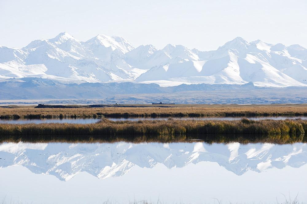 Snow mountains reflected in a lake, Bayanbulak, Xinjiang Province, China, Asia - 733-3156