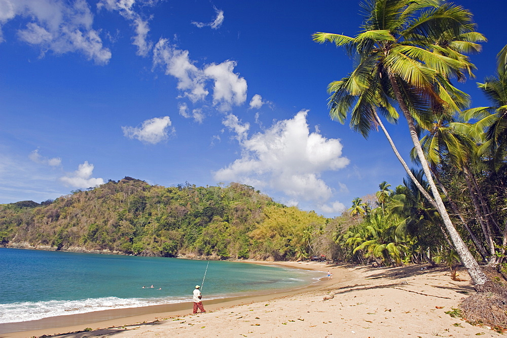 Fisherman on a palm-fringed beach, Englishmans Bay, Tobago, Trinidad and Tobago, West Indies, Caribbean, Central America