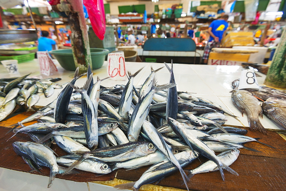 Fish for sale at the public market, Dumaguete, Cebu, The Visayas, Philippines, Southeast Asia, Asia