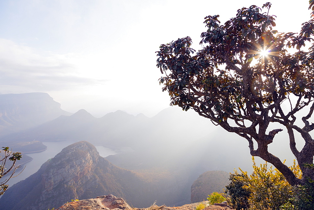 Blyde River Canyon Nature Reserve at sunrise, Mpumalanga, South Africa, Africa