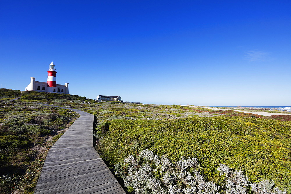 Agulhas lighthouse at southernmost tip of Africa, Agulhas National Park, Western Cape, South Africa, Africa