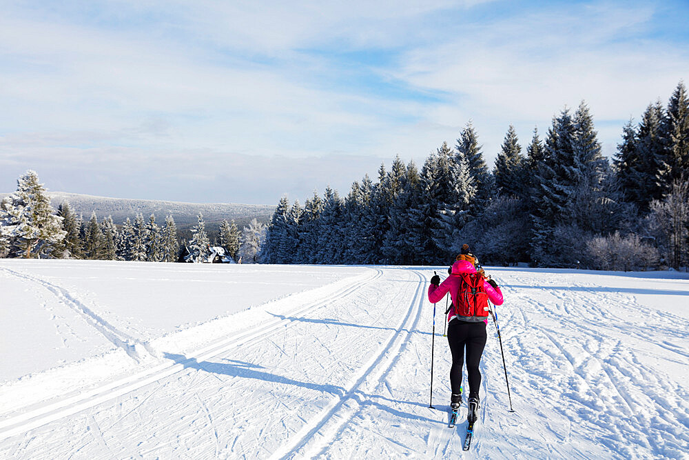 Cross country ski location, Liberec, Czech Republic, Europe