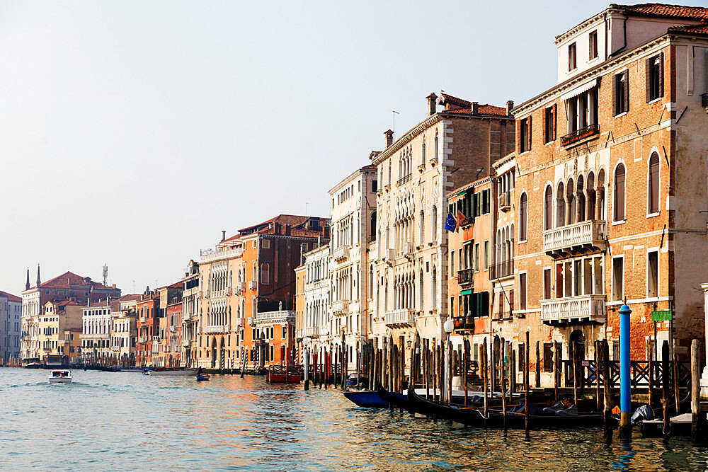 Historic Venetian buildings on the Grand Canal, Venice, UNESCO World Heritage Site, Veneto, Italy, Europe - 733-7861