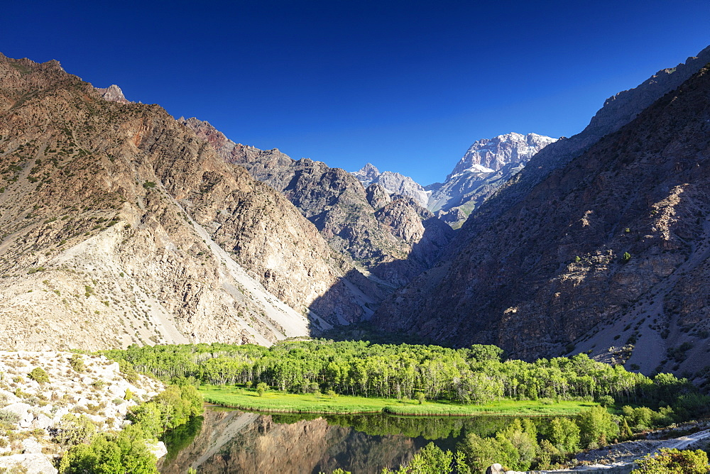 Oasis of trees below the mountains, Iskanderkul Lake, Fan Mountains, Tajikistan, Central Asia, Asia