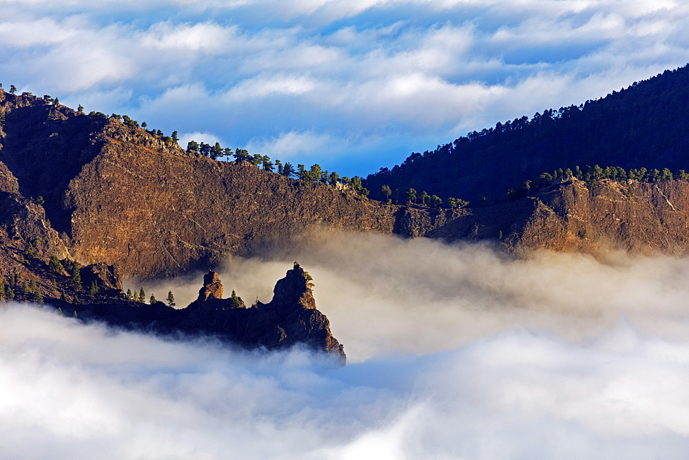 Europe, Spain, Canary Islands, La Palma, Unesco Biosphere site, National Park Caldera de Taburiente - 733-8471