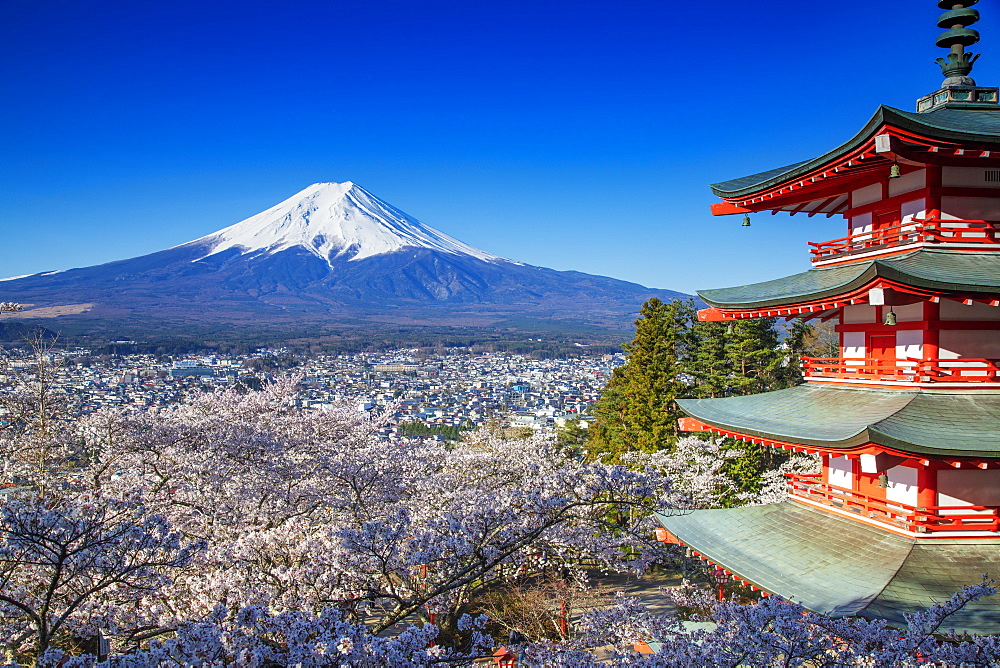 Chureito Pagoda in Arakurayama Sengen Park, and Mount Fuji, 3776m, UNESCO World Heritage Site, Yamanashi Prefecture, Honshu, Japan, Asia