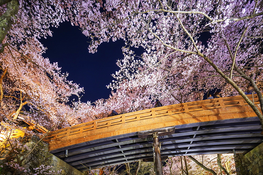 Asia, Japan, Honshu, Nagano prefecture, Takato, heart shaped cherry blossom at Takato castle