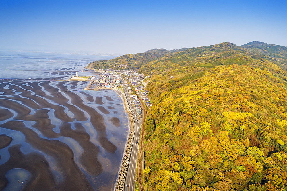 Amakusa forest and low tide beach, Kumamoto Prefecture, Kyushu, Japan, Asia