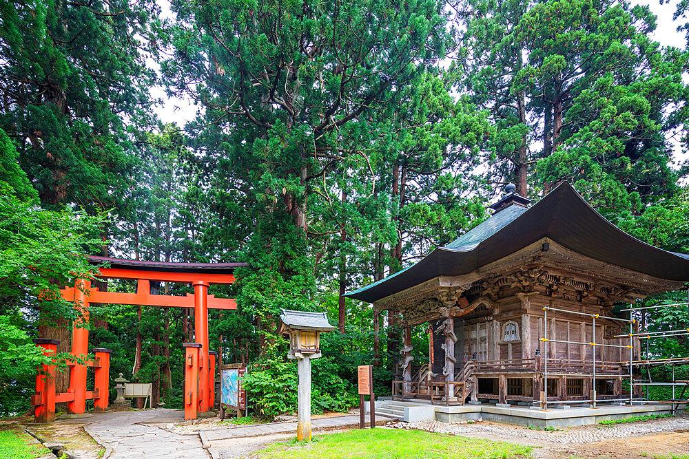 Japan, Honshu, Yamagata prefecture, Dewa sanzan Hagurosan temple, torii gate on Mt Haguro