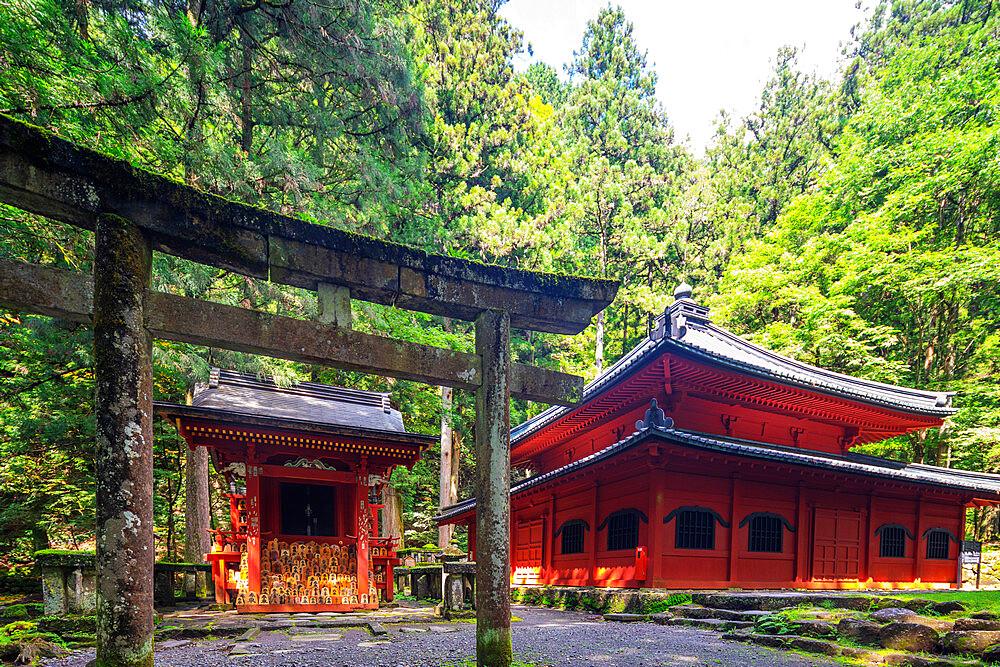 Japan, Honshu, Tochigi prefecture, Nikko, Unesco site, Rinnoji Kannondo (Kyoshado) buddhist temple