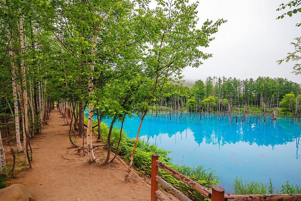 Japan, Hokkaido, Shirogane onsen, blue lake