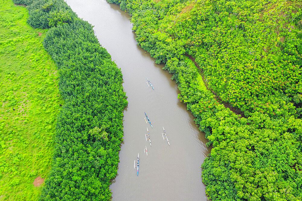 Drone view of kayakers on Wailua River, Kauai Island, Hawaii, United States of America, North America
