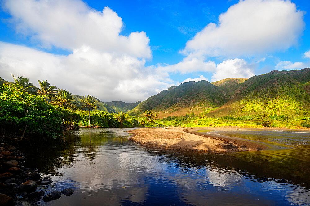 United States of America, Hawaii, Molokai island, Halawa valley - 733-8979