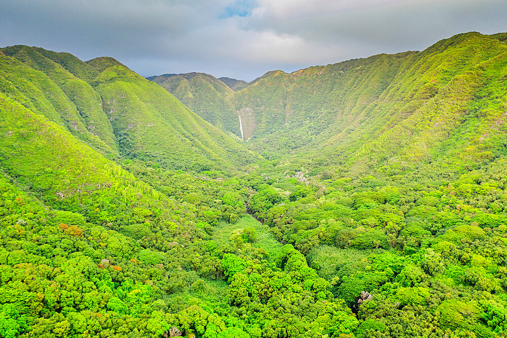 Aerial view by drone of Halawa valley, Molokai Island, Hawaii, United States of America, North America - 733-8981
