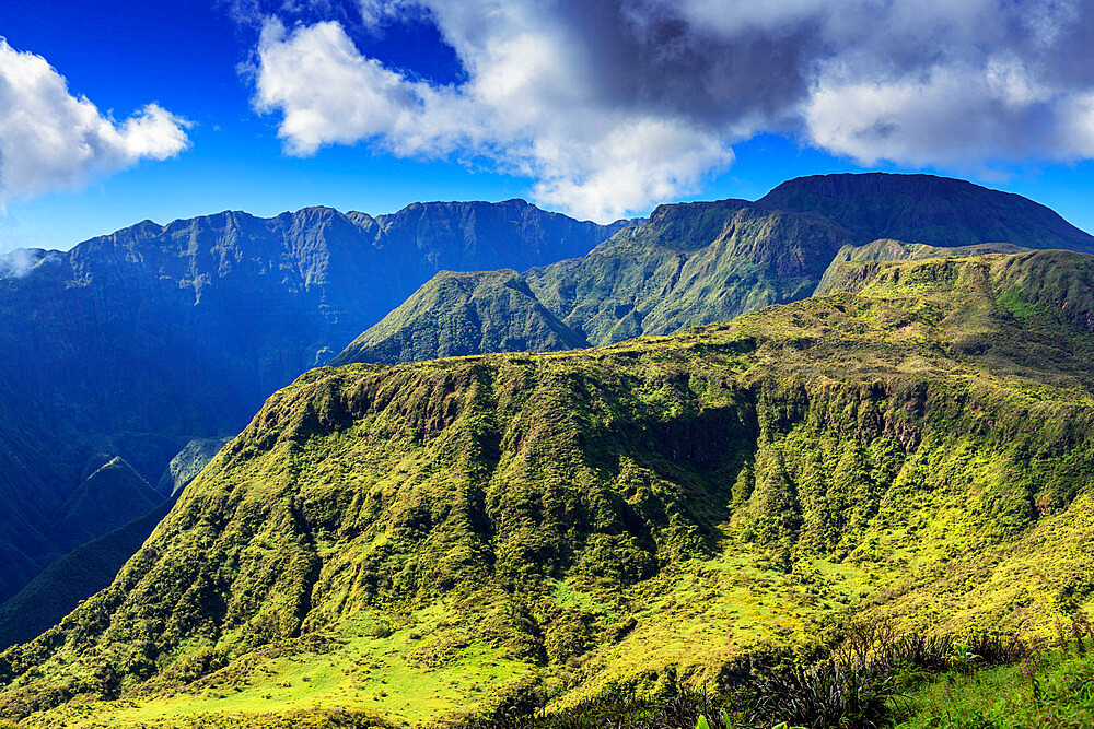 Waihee Ridge trail, Maui Island, Hawaii, United States of America, North America