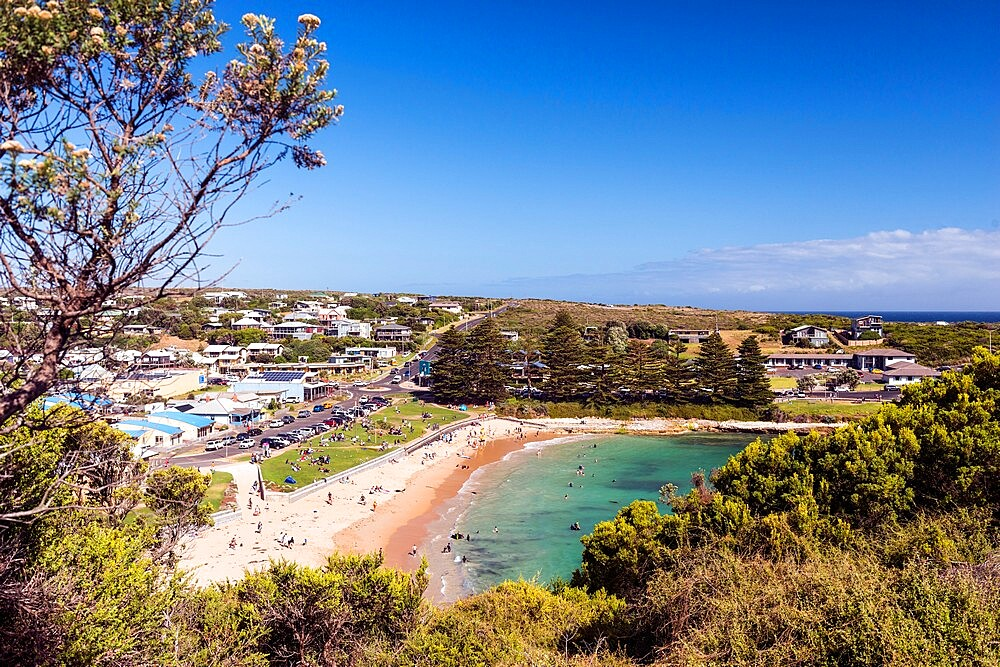View of Port Campbell and beach, Great Ocean Road, Victoria, Australia, Pacific - 737-730