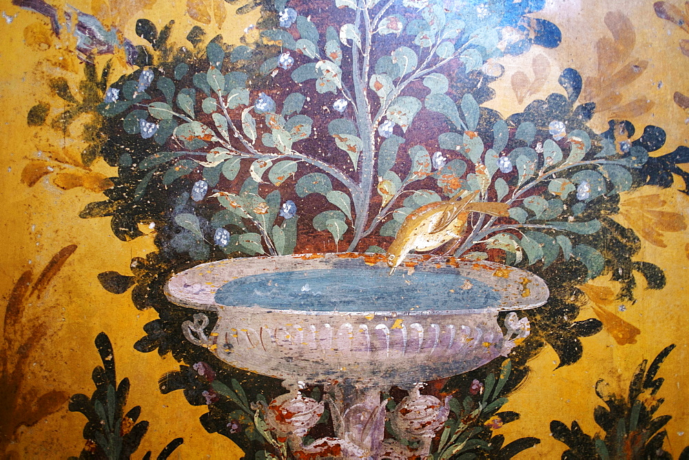 Drinking bird fresco detail in Poppea Sabina's private villa (Villa Oplontis), Oplontis, UNESCO World Heritage Site, Torre Annunziata, Campania, Italy, Europe