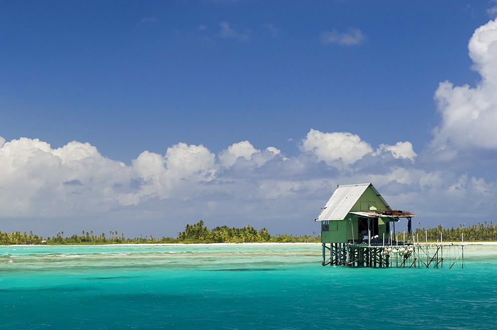 Tikehau, Tuamotu Archipelago, French Polynesia, Pacific Islands, Pacific