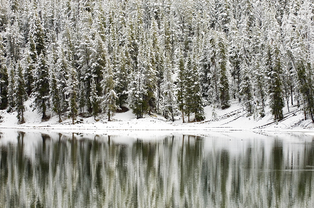 Yellowstone River in winter, Yellowstone National Park, UNESCO World Heritage Site, Wyoming, United States of America, North America - 741-2532