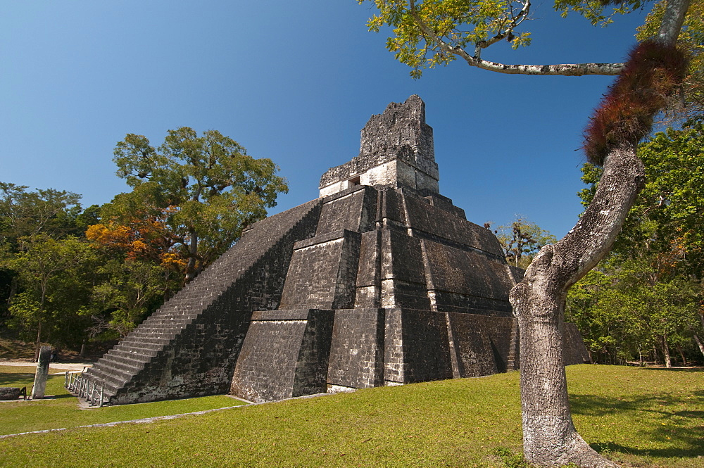 Temple II, Mayan archaeological site, Tikal, UNESCO World Heritage Site, Guatemala, Central America