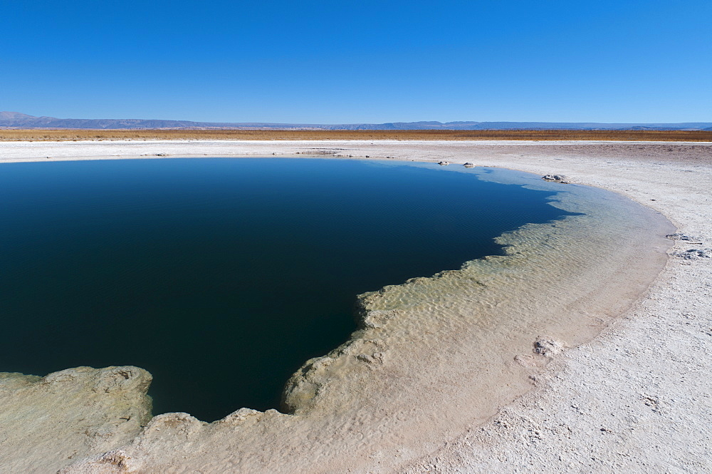 Laguna Sejar, Salar de Atacama, Atacama Desert, Chile, South America