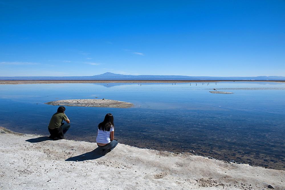 Tourists at Laguna Chaxa, Salar de Atacama, Atacama Desert, Chile, South America