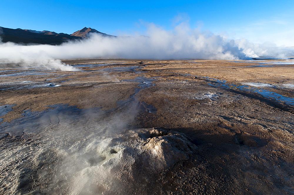 El Tatio Geysers, Atacama Desert, Chile, South America