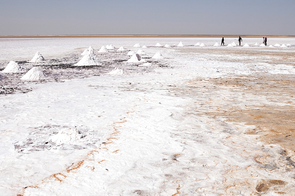 Salt flats near Shannah, Oman, Middle East