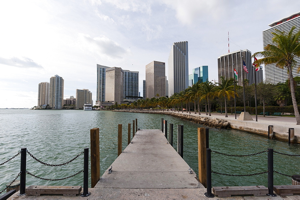 Downtown Miami buildings, Miami, Florida, United States of America, North America