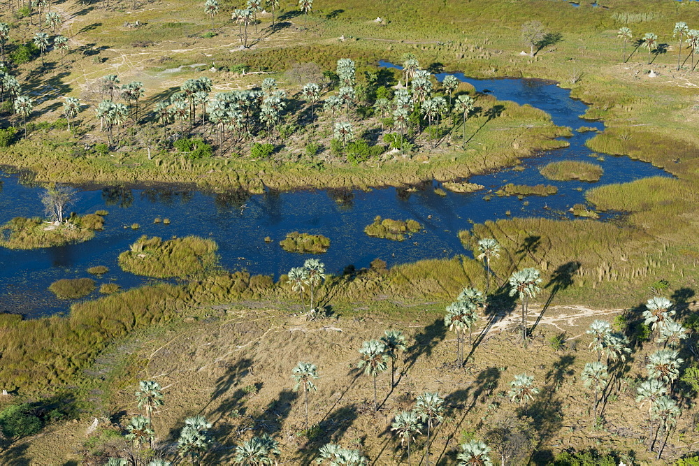 Aerial view of the Okavango Delta, Botswana, Africa