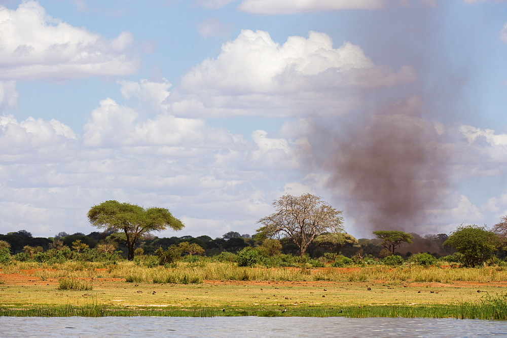 A dust tornado (dust devil), Tsavo, Kenya, East Africa, Africa