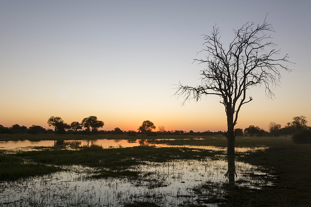 Sunset over the Delta, Khwai Conservation Area, Botswana, Africa