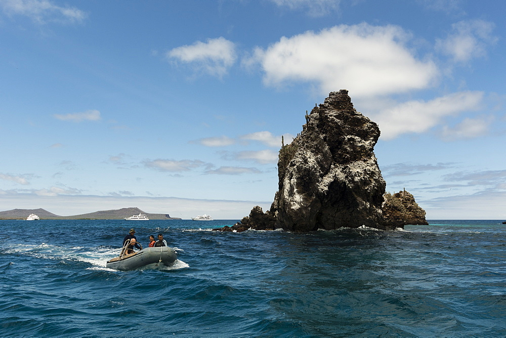 Floreana Island, Galapagos Islands, UNESCO World Heritage Site, Ecuador, South America - 741-5565