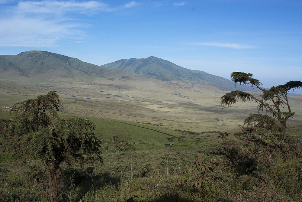 Ngorongoro Crater, UNESCO World Heritage Site, Ngorongoro Conservation Area, Serengeti, Tanzania, East Africa, Africa - 741-5646