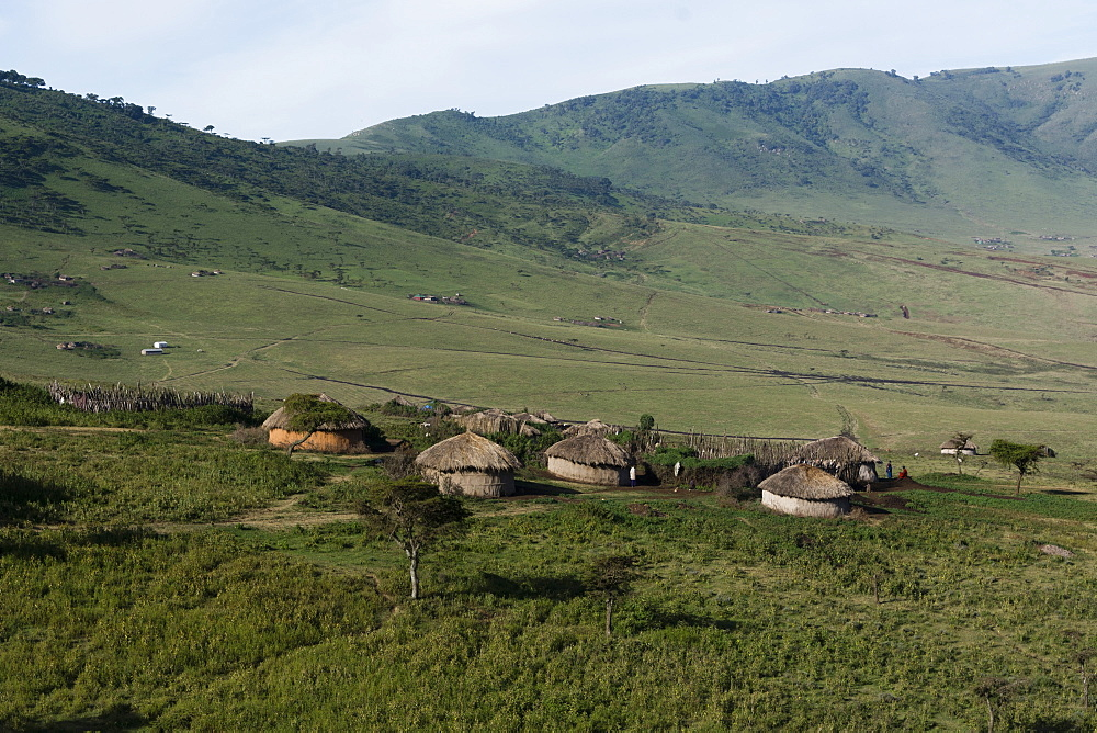 A Masai village in the Ngorongoro Conservation Area, Serengeti, Tanzania, East Africa, Africa