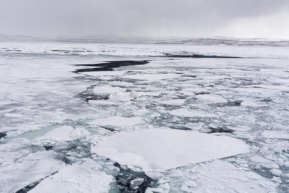 Murchinson Bay, Murchisonfjorden, Nordauslandet, Svalbar Islands, Norway. - 741-5702