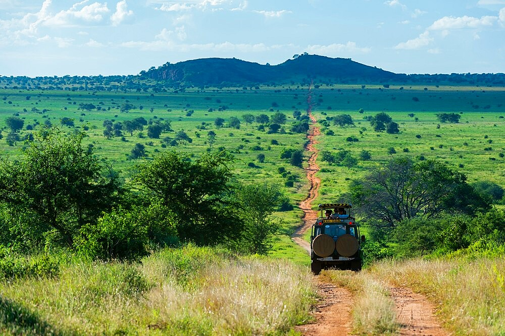 Lion Rock, a promontory which has inspired the Walt Disney movie The Lion King, Lualenyi, Tsavo Conservation Area, Kenya, East Africa, Africa - 741-5960