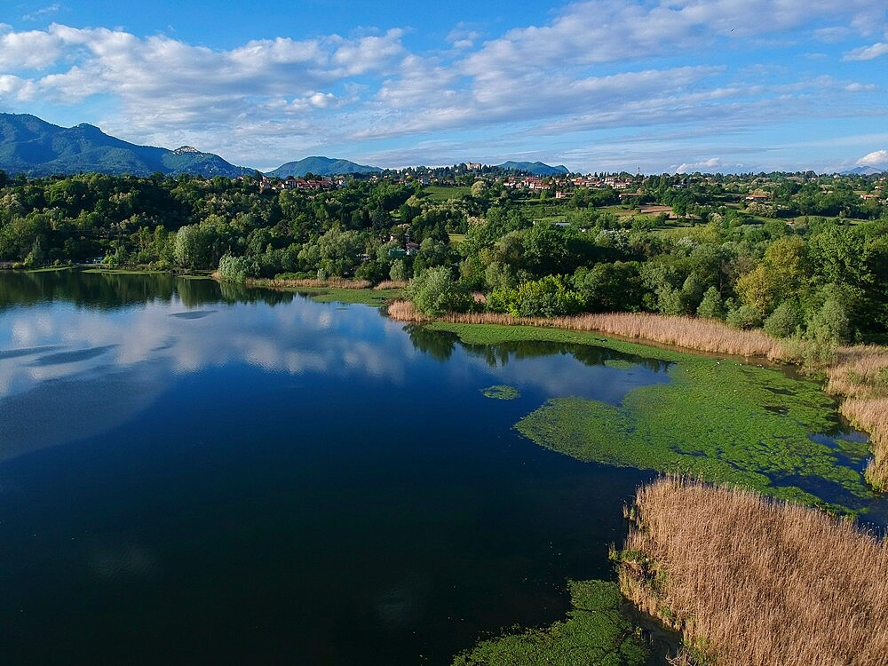 Aerial view of Lake Varese, Varese, Lombardy, Italy, Europe - 741-6001