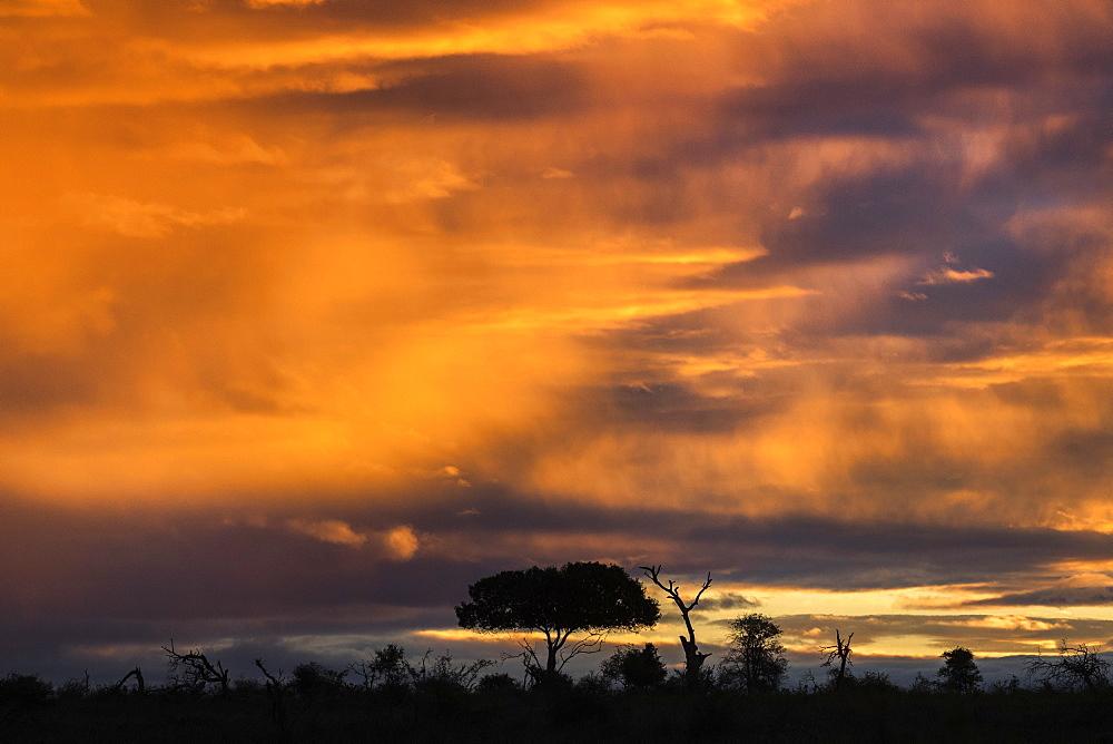 Sunset over Kruger national park, South Africa, May 2017