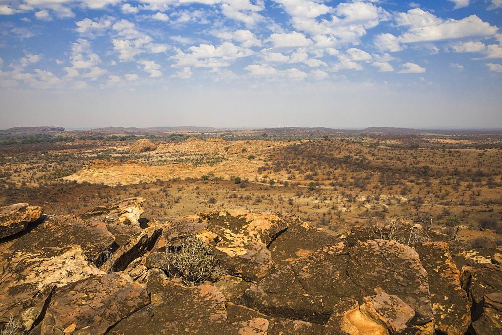 Northern Tuli game reserve, Botswana., November 2019