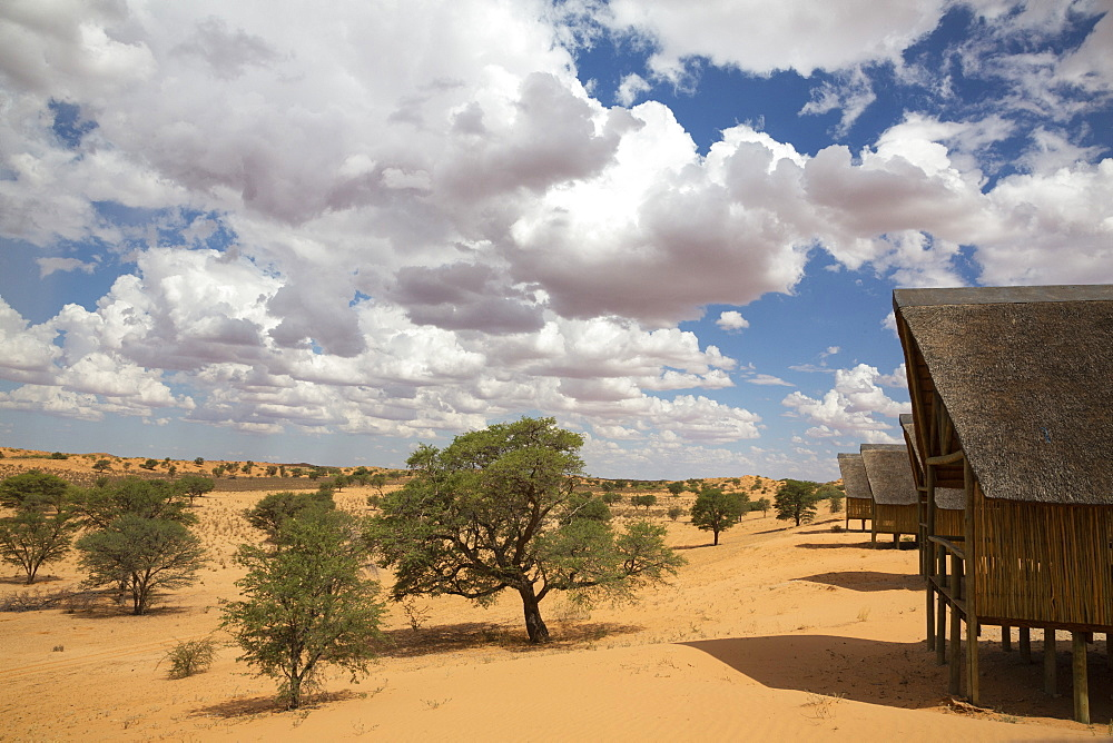 Ta Shebube Polentswa lodge, Kgalagadi Transfrontier Park, Botswana, Africa