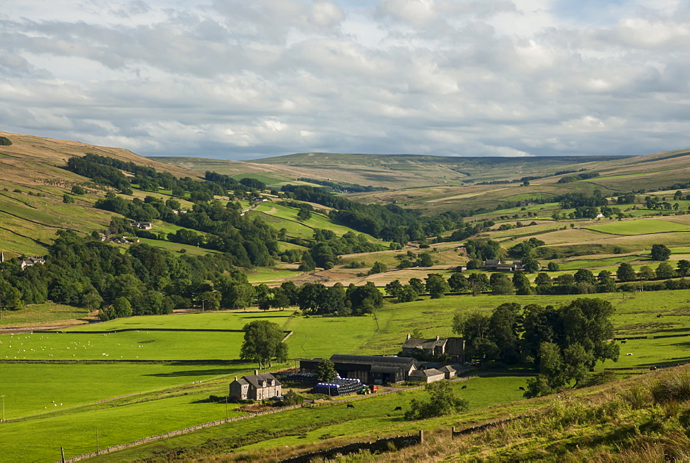 Farming country, Lower Pennines, Northumberland, England, United Kingdom, Europe