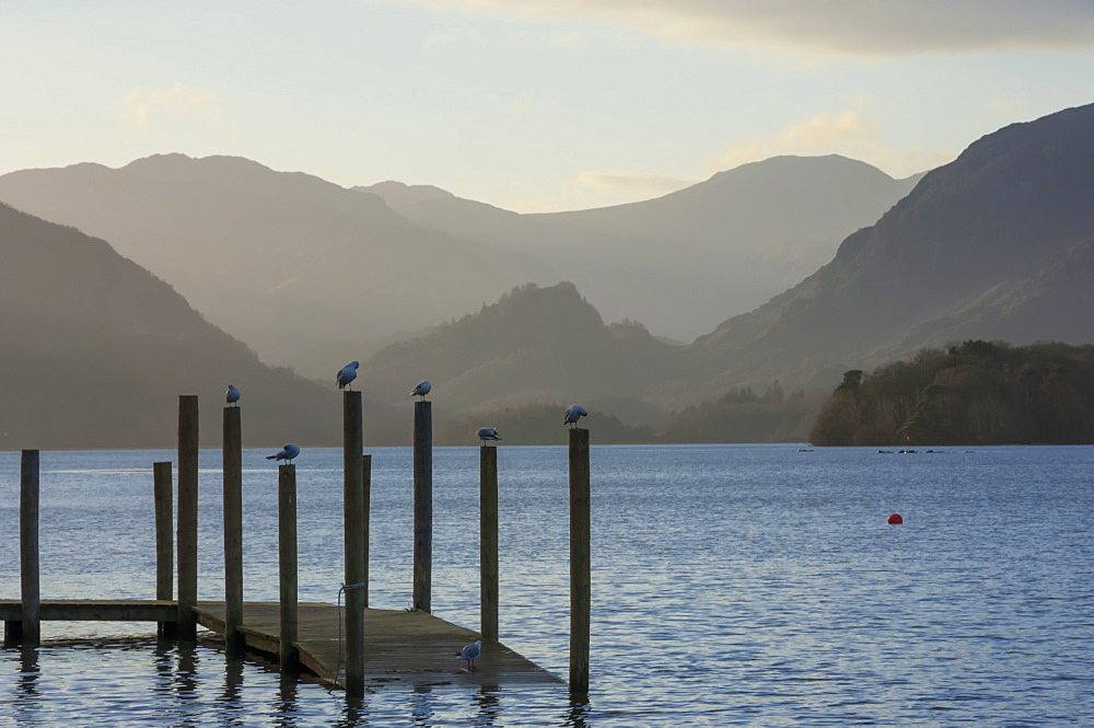 View towards Borrowdale, Derwentwater, Keswick, Lake District National Park, Cumbria, England, United Kingdom, Europe - 747-1857