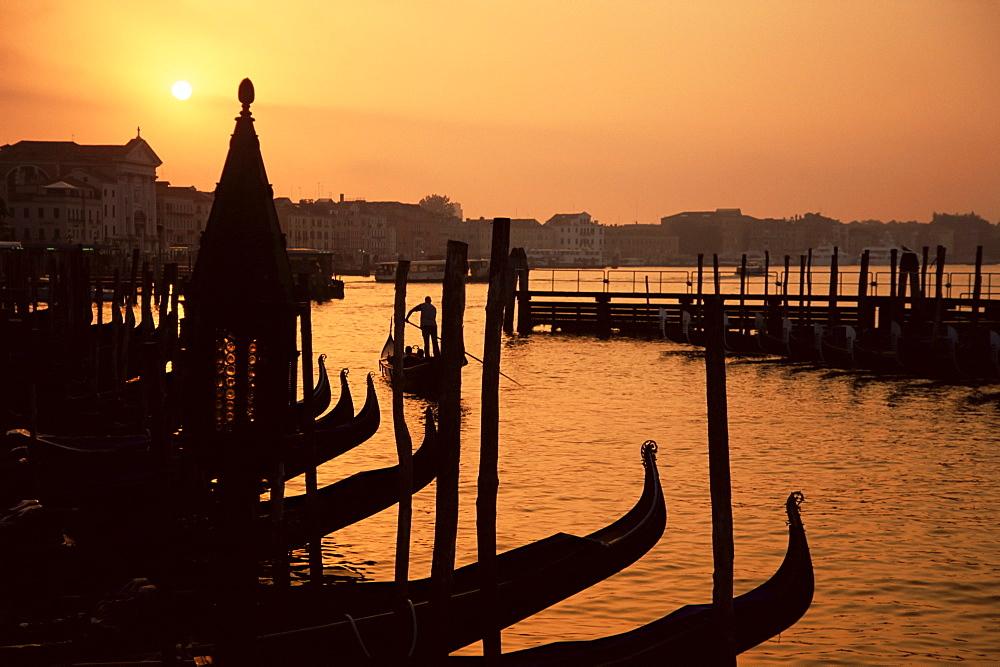 Row of gondolas at dawn, San Marco (St. Mark's), Venice, Veneto, Italy, Europe